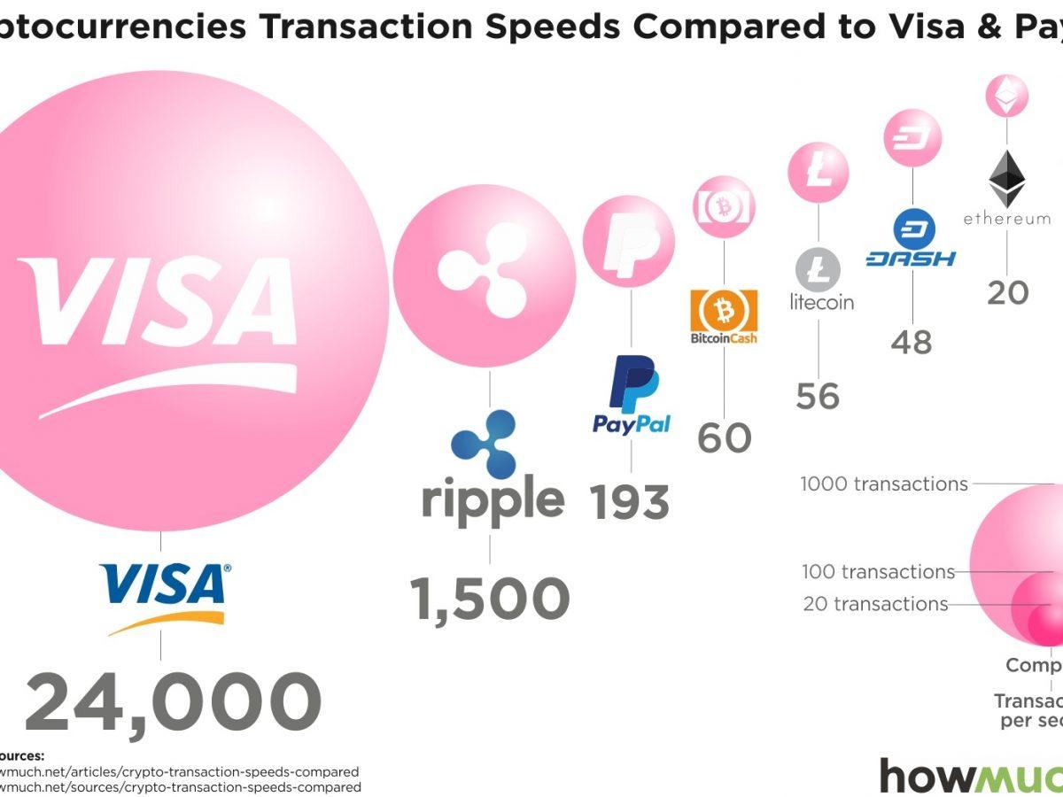 viziune de tranzacționare bitcoin